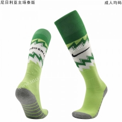 2020-2021 Nigeria Home Green Thailand Soccer Socks